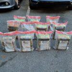 DNCD busca a integrantes de presunta red que envía cocaína a Puerto Rico en yola